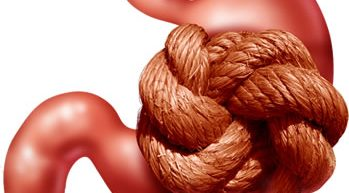 How Much Poop Is Trapped In Your Body?
