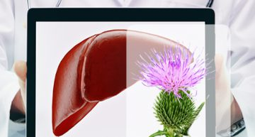 Top 5 Herbs For Liver Health