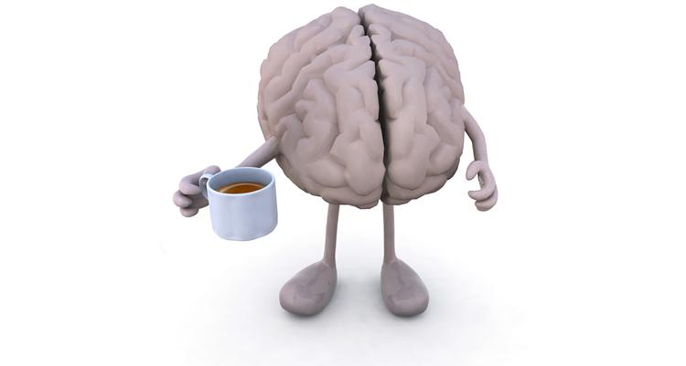 brain_health_liver