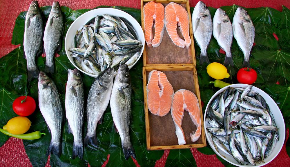 farmed_salmon