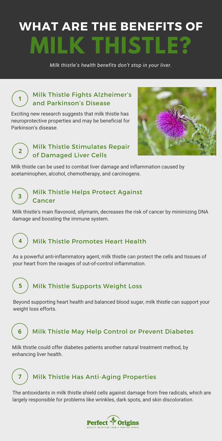 health_benefits_of_milk_thistle