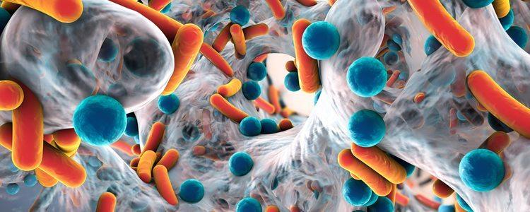 microorganisms_rsz