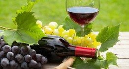 Can Red Wine Help You Lose Weight?